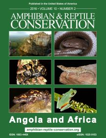 ARC Angola and Africa Issue Cover