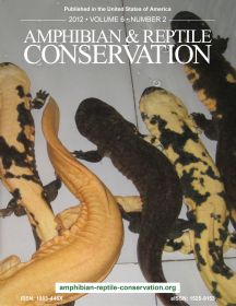 ARC Giant Salamander Issue